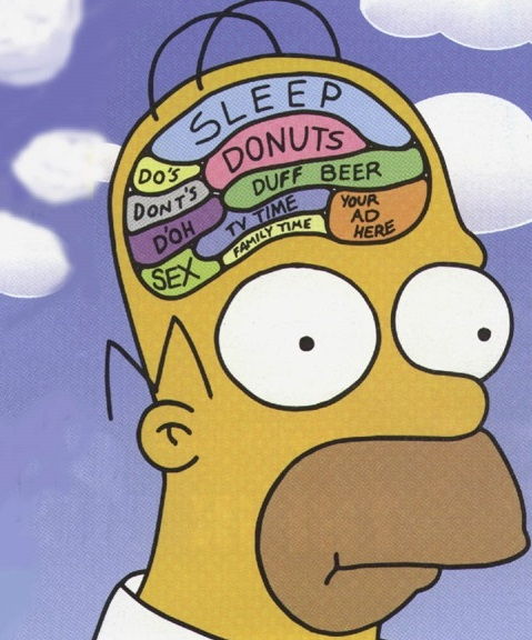 psychology of homer simpson essay The simpsons and philosophy: the d'oh of homer (popular culture and  of  psychology, this unique blend of science and pop culture consists of essays by.